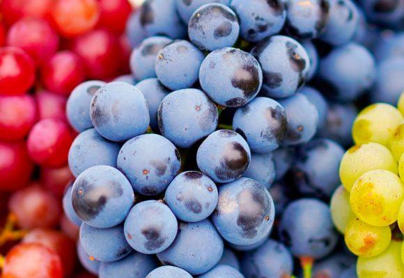 ¿Qué sucede en mi organismo al comer uvas?